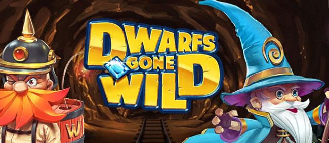 Rizk Dwarfs Gone Wild