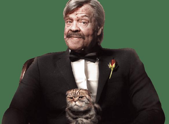 Kolikkopelit kasino mies kissa sylissä